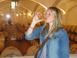 wine tasting in cycle tours