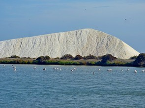 salt lakes and flamingos